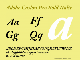 Adobe Caslon Pro Bold Italic Version 2.096;PS 2.000;hotconv 1.0.70;makeotf.lib2.5.58329 Font Sample