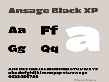 Ansage Black XP Version 1.000图片样张