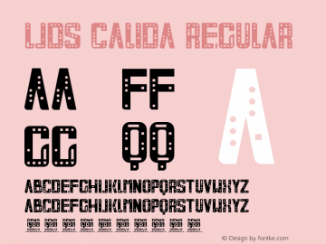 LJDS Calida Version 1.00 February 8, 2020, initial release图片样张