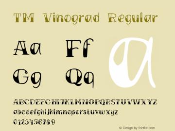 TMVinograd-Regular Version 001.000图片样张
