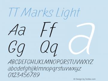 TTMarks-Light Version 1.000图片样张
