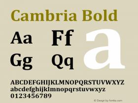 Cambria Bold Version 5.96图片样张
