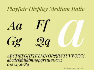 Playfair Display Medium Italic Version 1.200; ttfautohint (v1.8.2)图片样张