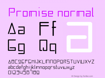 Promise Version 1图片样张