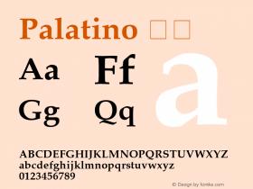 Palatino 粗体 图片样张