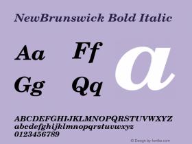 NewBrunswick Bold Italic v1.0c图片样张
