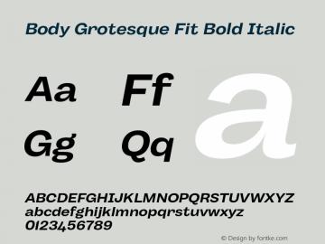 BodyGrotesque-FitBoldItalic Version 1.006图片样张