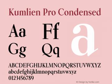 Kumlien Pro Condensed 1.000图片样张