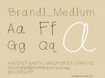 Brandi Medium Version 001.000图片样张