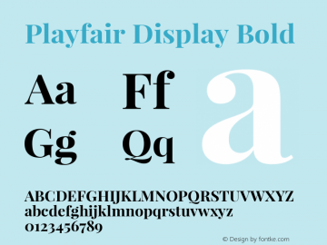 Playfair Display Bold Version 1.003;PS 001.003;hotconv 1.0.70;makeotf.lib2.5.58329; ttfautohint (v0.95) -l 42 -r 42 -G 200 -x 14 -w