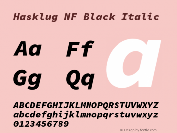 Hasklug Black Italic Nerd Font Complete Mono Windows Compatible Version 1.050;PS 1.0;hotconv 16.6.51;makeotf.lib2.5.65220 Font Sample
