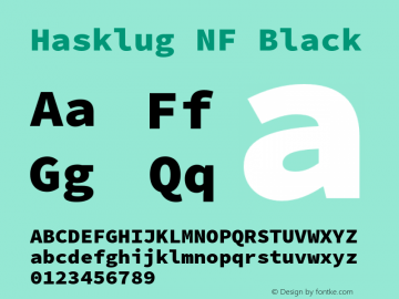 Hasklug Black Nerd Font Complete Mono Windows Compatible Version 2.030;PS 1.0;hotconv 16.6.51;makeotf.lib2.5.65220 Font Sample