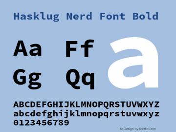 Hasklug Bold Nerd Font Complete Version 2.030;PS 1.0;hotconv 16.6.51;makeotf.lib2.5.65220 Font Sample
