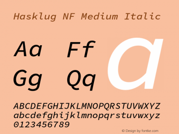 Hasklug Medium Italic Nerd Font Complete Windows Compatible Version 1.050;PS 1.0;hotconv 16.6.51;makeotf.lib2.5.65220 Font Sample
