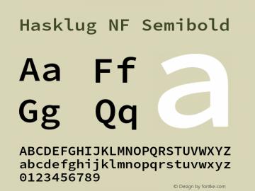 Hasklug Semibold Nerd Font Complete Windows Compatible Version 2.030;PS 1.0;hotconv 16.6.51;makeotf.lib2.5.65220 Font Sample