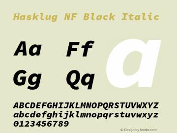 Hasklug Black Italic Nerd Font Complete Windows Compatible Version 1.050;PS 1.0;hotconv 16.6.51;makeotf.lib2.5.65220 Font Sample