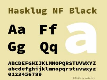 Hasklug Black Nerd Font Complete Windows Compatible Version 2.030;PS 1.0;hotconv 16.6.51;makeotf.lib2.5.65220 Font Sample