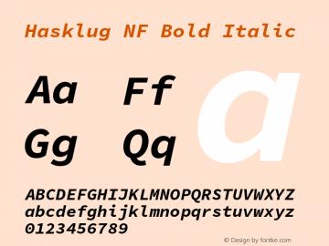 Hasklug Bold Italic Nerd Font Complete Mono Windows Compatible Version 1.050;PS 1.0;hotconv 16.6.51;makeotf.lib2.5.65220 Font Sample