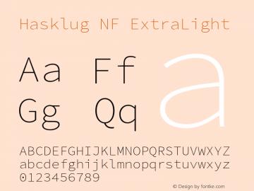 Hasklug ExtraLight Nerd Font Complete Mono Windows Compatible Version 2.030;PS 1.0;hotconv 16.6.51;makeotf.lib2.5.65220 Font Sample