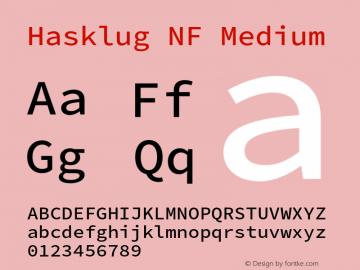 Hasklug Medium Nerd Font Complete Windows Compatible Version 2.030;PS 1.0;hotconv 16.6.51;makeotf.lib2.5.65220 Font Sample