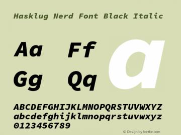 Hasklug Black Italic Nerd Font Complete Version 1.050;PS 1.0;hotconv 16.6.51;makeotf.lib2.5.65220 Font Sample