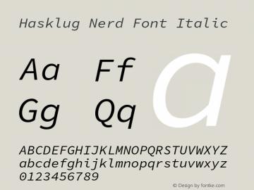 Hasklug Italic Nerd Font Complete Version 1.030;PS 1.0;hotconv 16.6.51;makeotf.lib2.5.65220 Font Sample