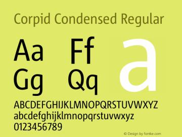 Corpid Condensed Version 2.001图片样张