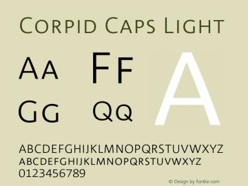 CorpidCaps-Light 001.072图片样张