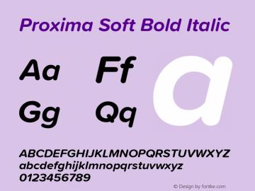 ProximaSoft-BoldIt Version 1.005 | w-rip DC20181225图片样张