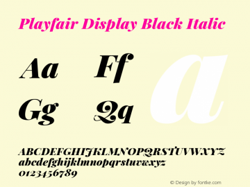 Playfair Display Black Italic Version 1.200; ttfautohint (v1.8.2)图片样张