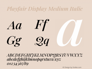 Playfair Display Medium Italic Version 1.200; ttfautohint (v1.8.2)图片样张