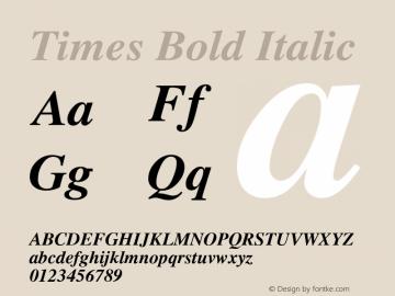 Times Bold Italic Version 2.03图片样张
