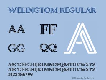 Welingtom Version 1.00;June 3, 2020;FontCreator 11.5.0.2422 32-bit图片样张