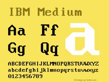 Nouveau IBM Version 1.600图片样张