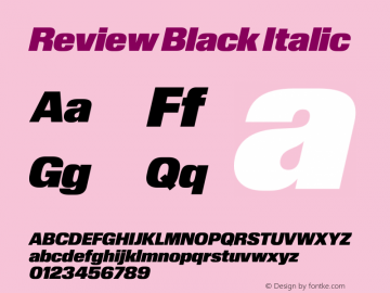Review-BlackItalic Version 1.001 2020 | wf-rip DC20201005图片样张