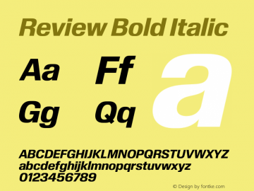 Review-BoldItalic Version 1.001 2020 | wf-rip DC20201005图片样张