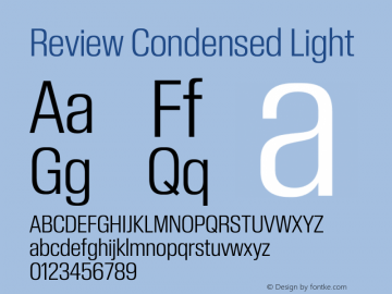 ReviewCondensed-Light Version 1.001 2020 | wf-rip DC20201005图片样张