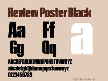 Review Poster Black Version 1.001 2020 | wf-rip DC20201005图片样张