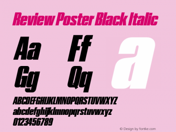 Review Poster Black Italic Version 1.001 2020 | wf-rip DC20201005图片样张