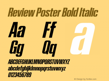 Review Poster Bold Italic Version 1.001 2020 | wf-rip DC20201005图片样张