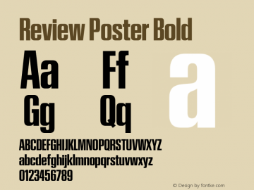 Review Poster Bold Version 1.001 2020 | wf-rip DC20201005图片样张