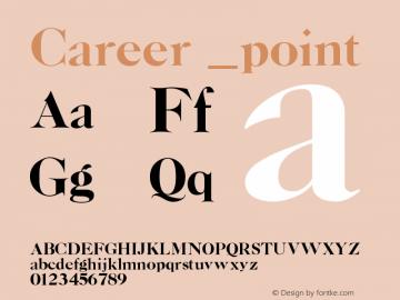 Career point Version 001.000图片样张