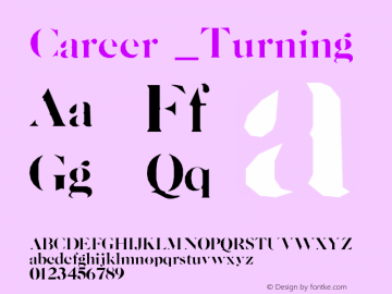 Career Turing Version 001.000图片样张