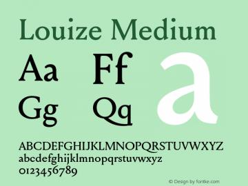 Louize-Medium Version 1.000图片样张