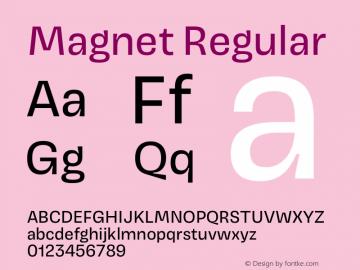 Magnet Version 1.001;PS 1.000;hotconv 16.6.51;makeotf.lib2.5.65220 Font Sample