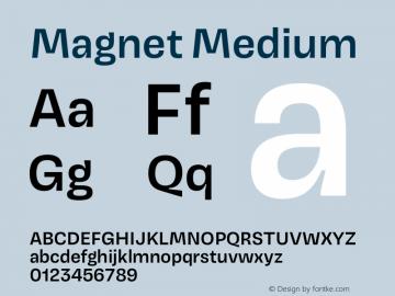 Magnet Medium Version 1.001;PS 1.000;hotconv 16.6.51;makeotf.lib2.5.65220 Font Sample