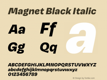 Magnet Black Italic Version 1.001;PS 1.000;hotconv 16.6.51;makeotf.lib2.5.65220 Font Sample