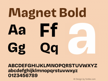 Magnet Bold Version 1.001;PS 1.000;hotconv 16.6.51;makeotf.lib2.5.65220 Font Sample