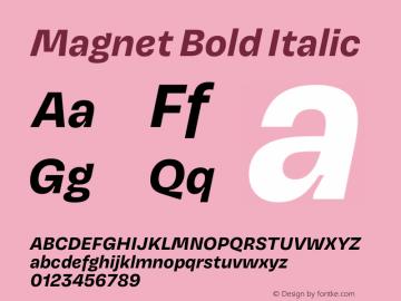 Magnet Bold Italic Version 1.001;PS 1.000;hotconv 16.6.51;makeotf.lib2.5.65220 Font Sample