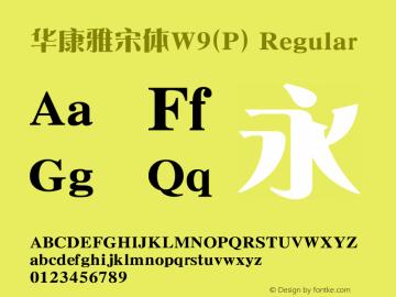 华康雅宋体W9(P) Regular Version 1.00图片样张